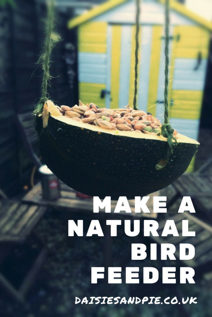 "natural bird feeder filled with seeds hung in the garden. Text overlay saying ""make a natural bird feeder"""