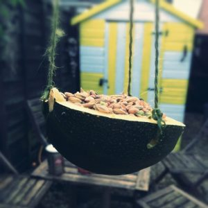 natural bird feeder hung in the garden in front of a beach hut style shed in yellow and white