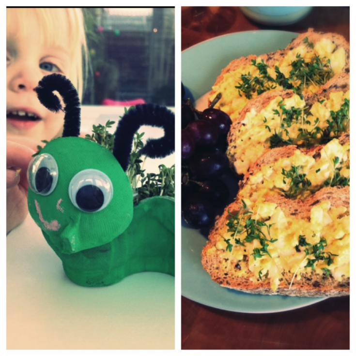 two images - one of a painted green caterpillar made from egg boxes with googly eyes and pipe cleaner antenna - caterpillar has cress growing from it's back. Other image shows the cress snipped onto an egg mayonnaise sandwich with grapes.