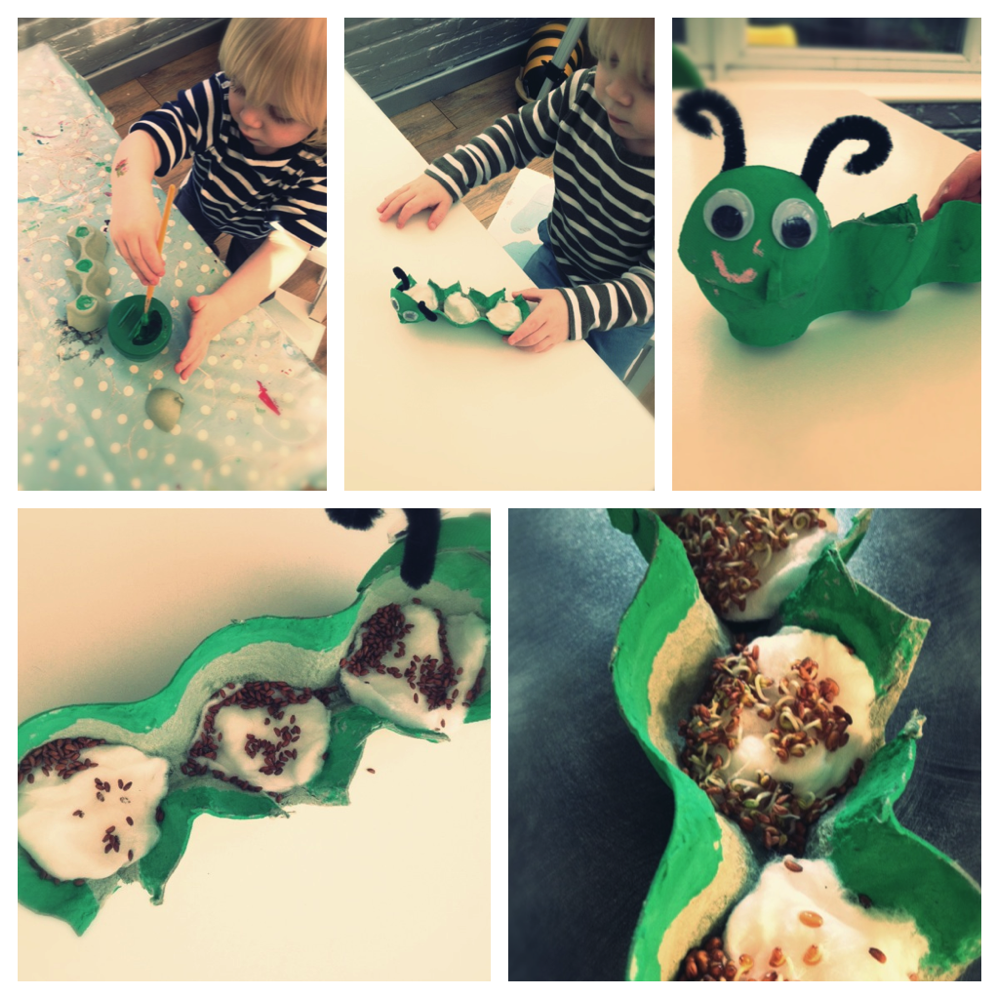 five step by step photos for making a cress caterpillar from egg boxes - clueing the box to caterpillar shape, painting it green, filling it with cotton wool, planning the cress seeds