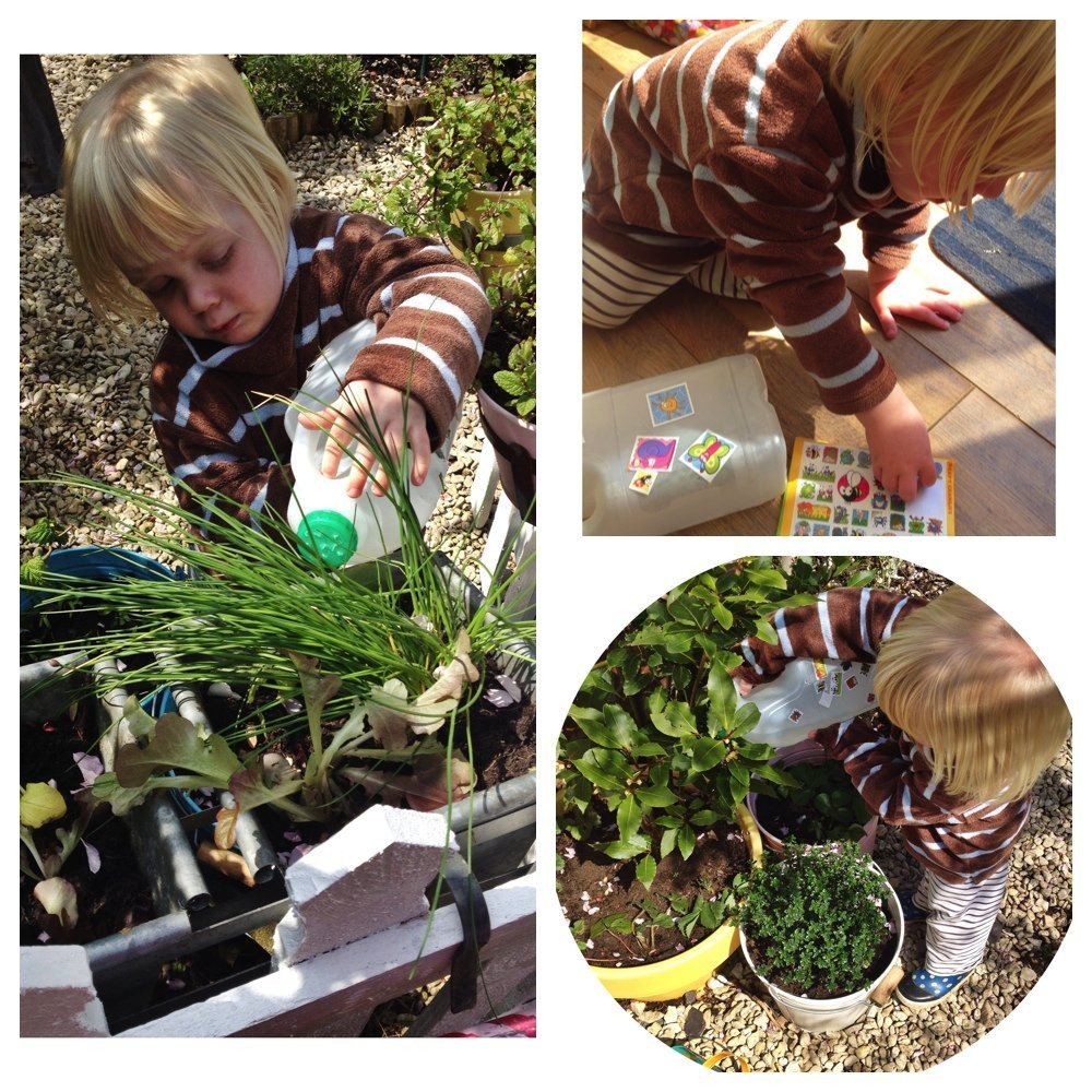 how to make milk bottle watering cans, quick gardening activity for kids