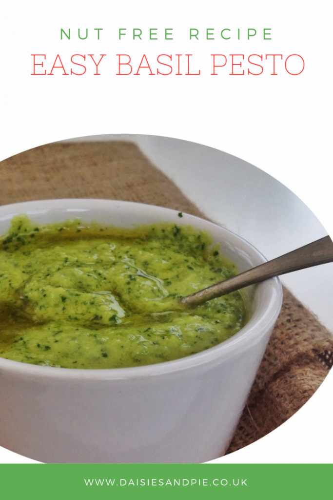 "white pot filled with homemade nut free basil peso. Text overlay saying ""nut free recipe -easy basil pesto"""