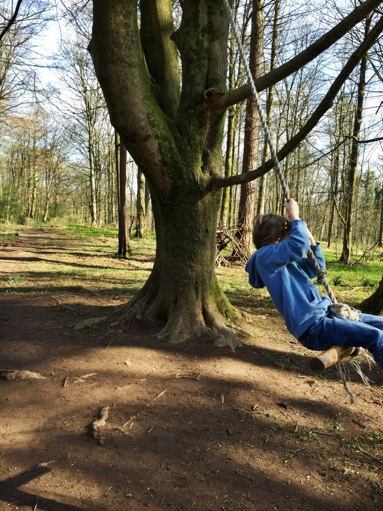 rope swing in the forest, wild play trail, national trust 50 things, days out for kids in Lake District