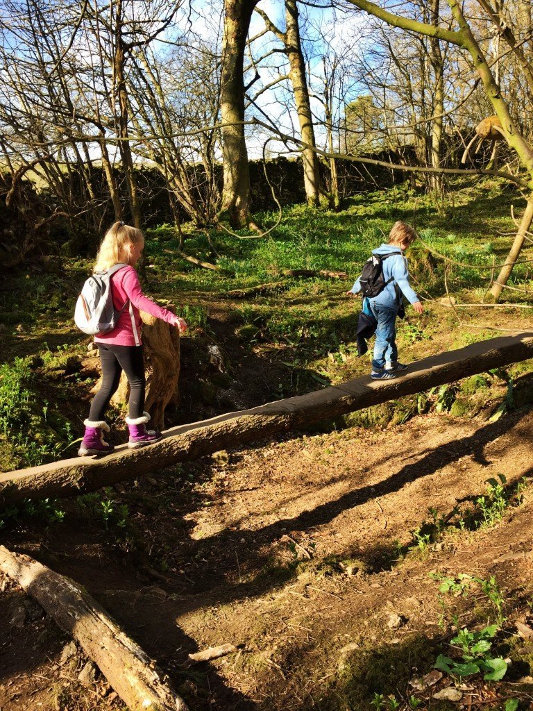 tree trunk bridge, wild play trail, forest play, national trust 50 things, days out for kids in Lake district