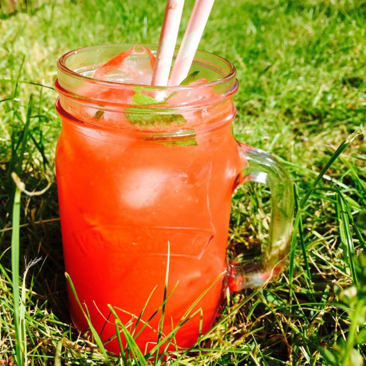 watermelon cooler, watermelon drink recipe, watermelon mocktail, watermelon drink for kids, fruity drink for kids, easy family food from daisies and pie