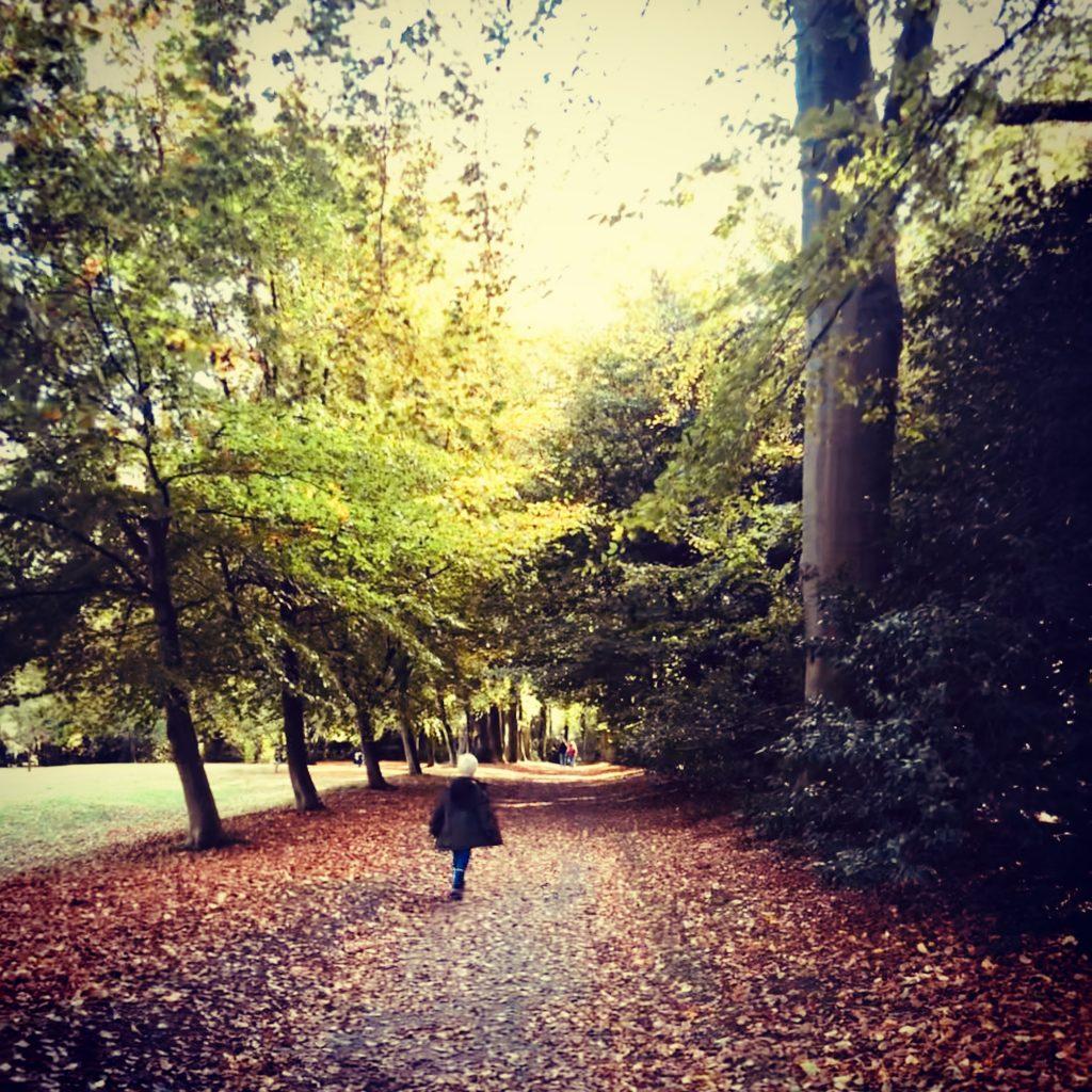 boy walking down an autumn leaf strewn pathway between the trees
