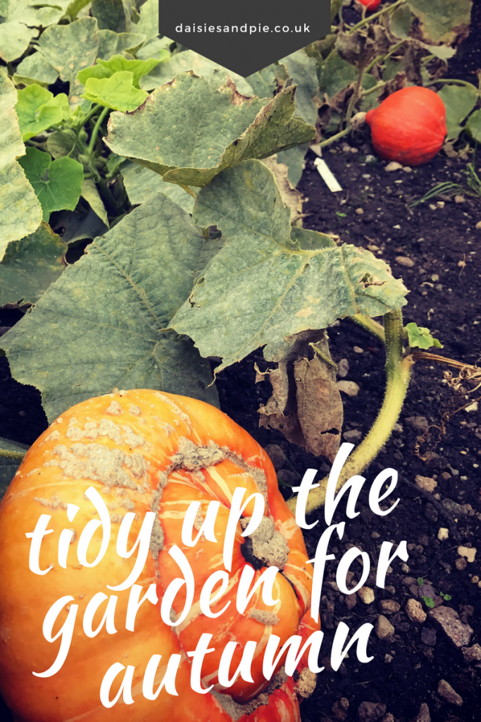 Tidy up the garden for autumn, autumn gardening jobs, homemaking tips