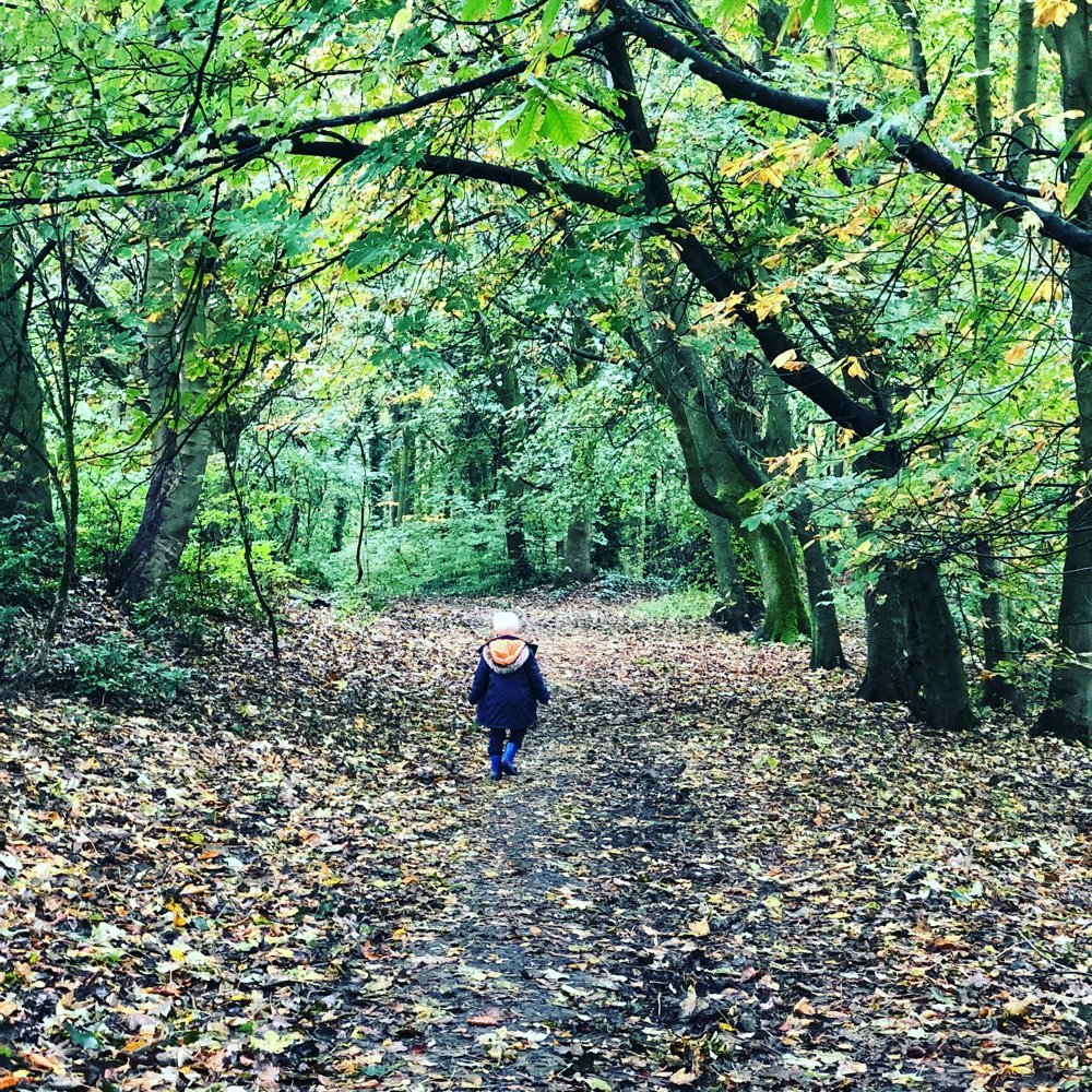 reasons to love autumn - walks in the woods - image of young boy walking through the autumn leaves down a woodland path
