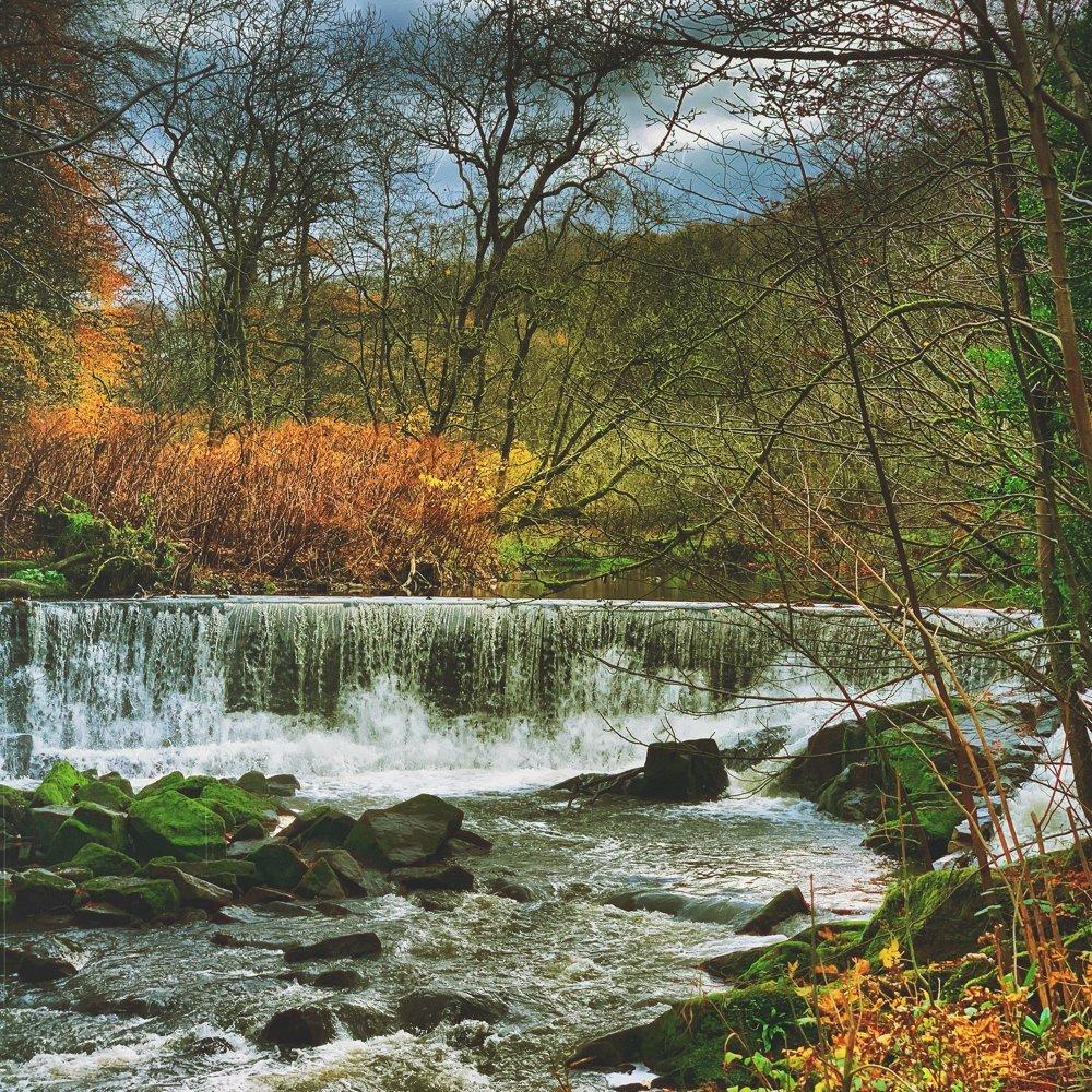 reasons to love autumn - autumn walks at Hoghton Bottoms Weir