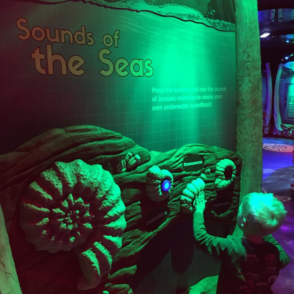 jurassic seas exhibition, sea life blackpool, half term stuff to do in blackpool, days out blackpool, days out with kids north west