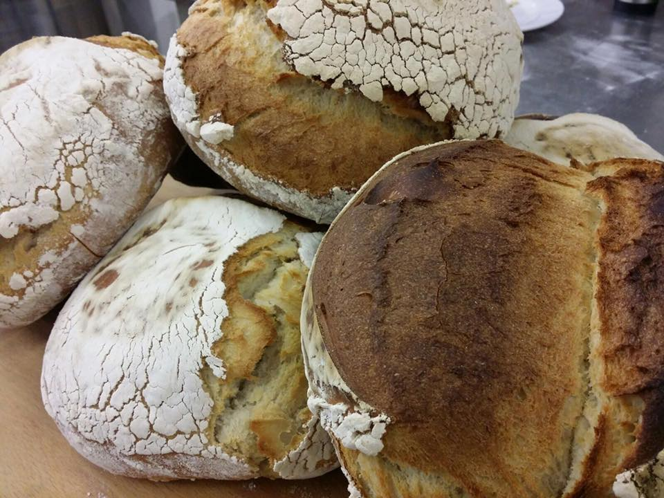 Sourdough Bread from All You Knead at Haigh Kitchen Courtyard, Haigh Woodland Park, Haigh Hall Wigan, Foodie Destinations, North West, Artisan Food Producers Manchester, Artisan Food Producers Lancashire, Artisan Bread