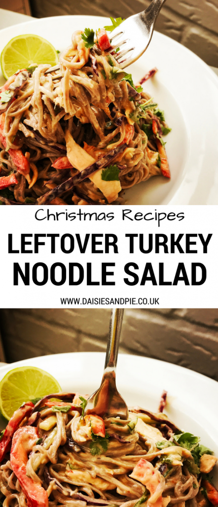 Delicious Christmas recipe use turkey leftover to create a tasty leftover turkey noodle salad