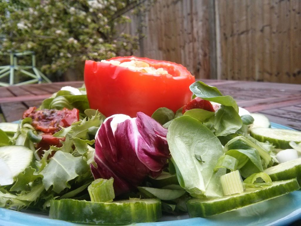 vegan stuffed pepper served with fresh green salad