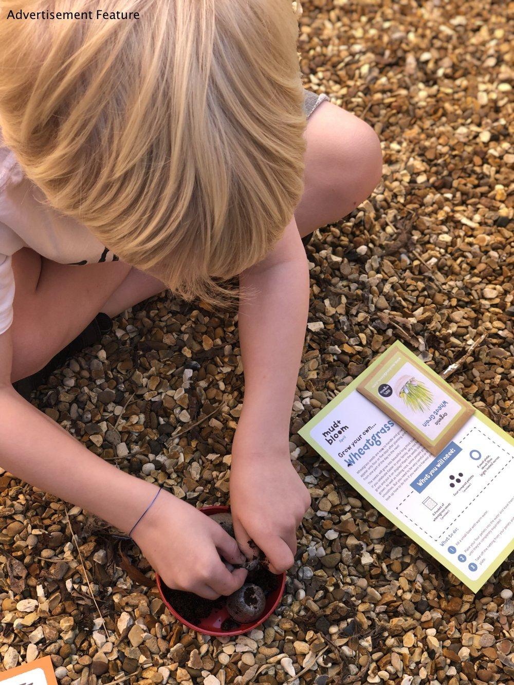 Mud & Bloom kids subscription box - boy planting wheatgrass