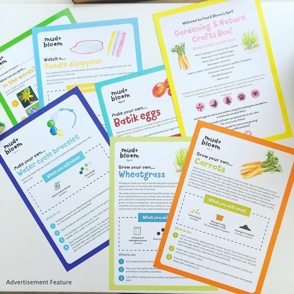 Mud & Bloom kids subscription box activity instruction cards