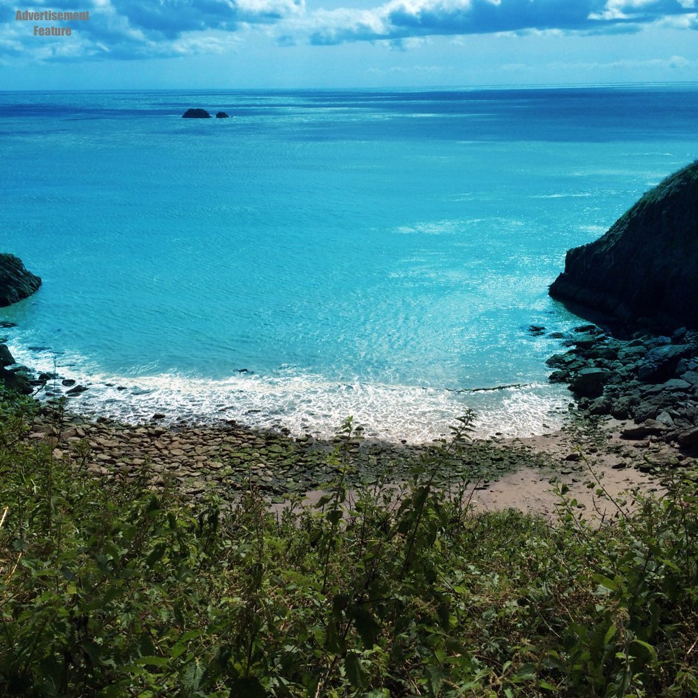 view out to see across the cove at Kingswear Devon