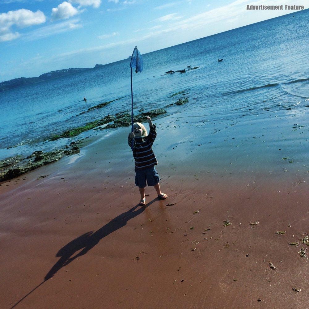 little boy playing with a fishing net on Goodrington Sands Torbay Devon