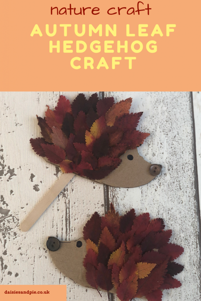 "hedgehog craft made from red and orange autumn leaves stuck onto cardboard templates with painted on eyes and a stuck on button nose. Text ""nature craft - autumn leaf hedgehog craft - www.daisiesandpie.co.uk"""