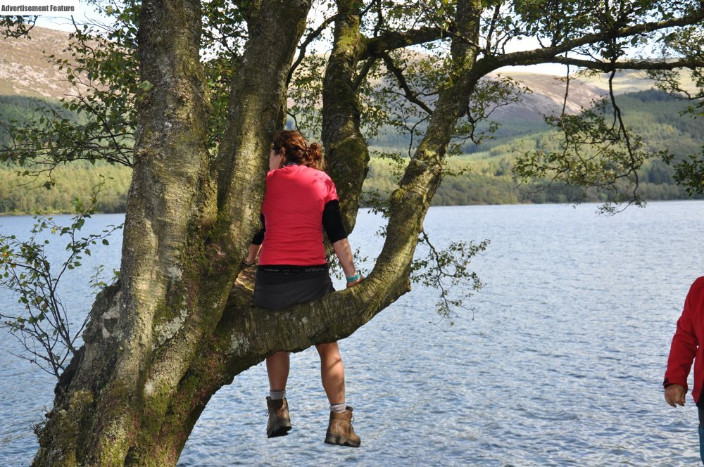 person sitting on a tree branch up a tree over looking a lake in the Peak District