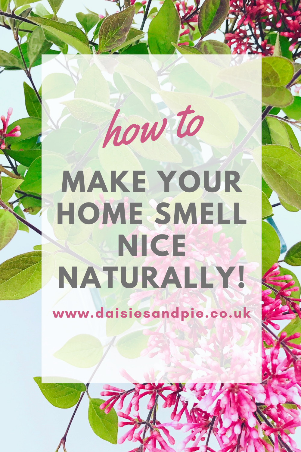 "Text ""how to make your house smell nice naturally"" over an image of pink lilacs in a vase"