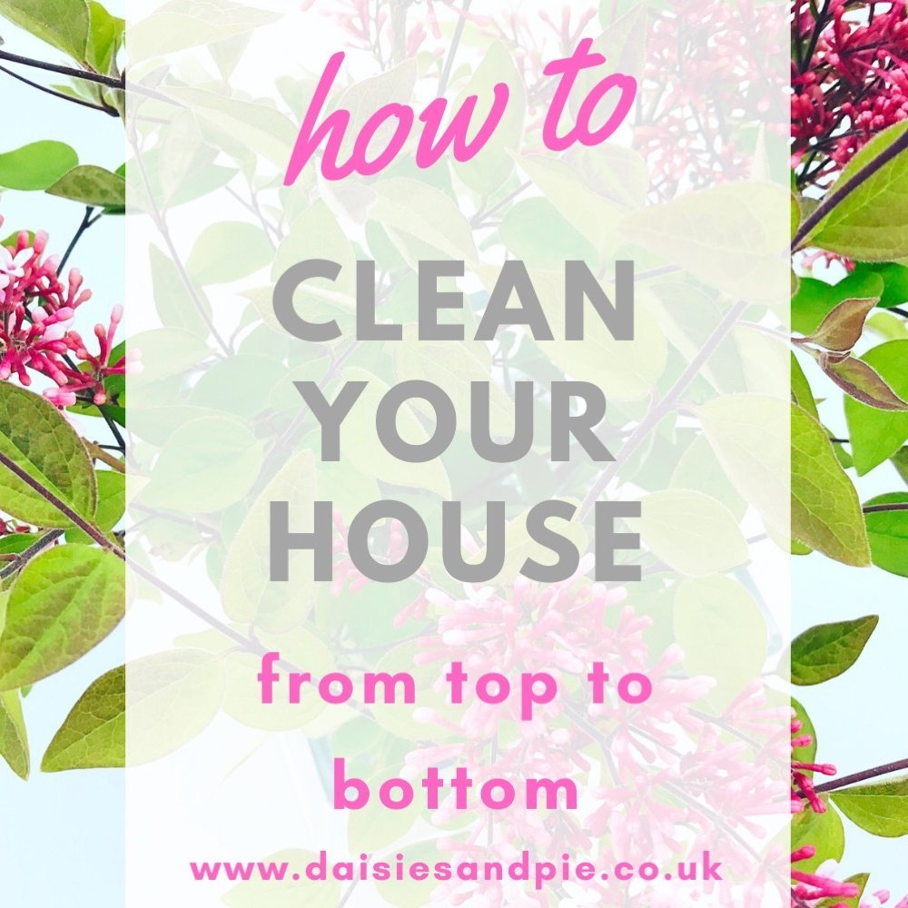 "vase of lilacs. Text overlay ""how to clean your house from top to bottom - www.daisiesandpie.co.uk"""