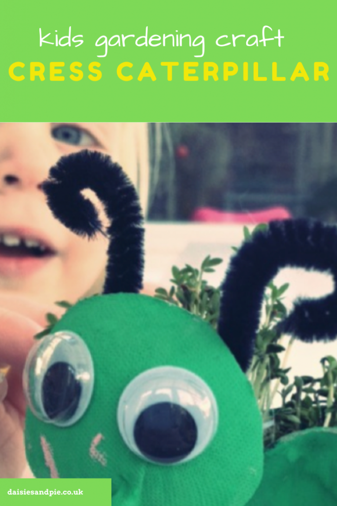 cress caterpillar with small child in background - how to grow cress instructions