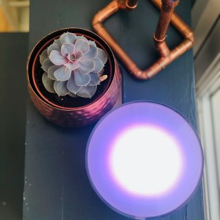 Philips Hue Go Portable light emitting lilac light. Lamp is on a dark blue stool next to a succulent plant in a copper plant pot and copper candlesticks made from plumbing pipes