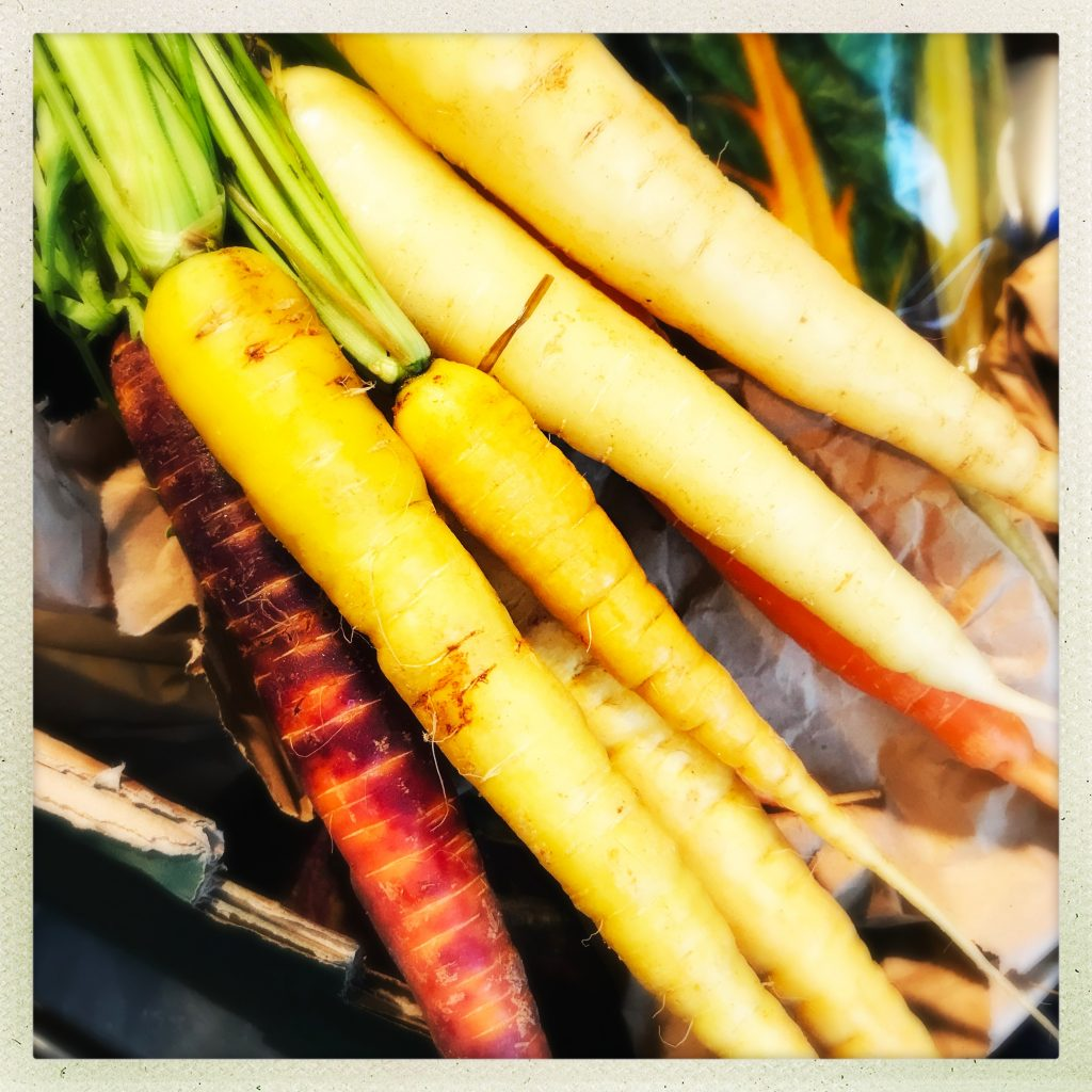carrots in yellow, purple and red colours