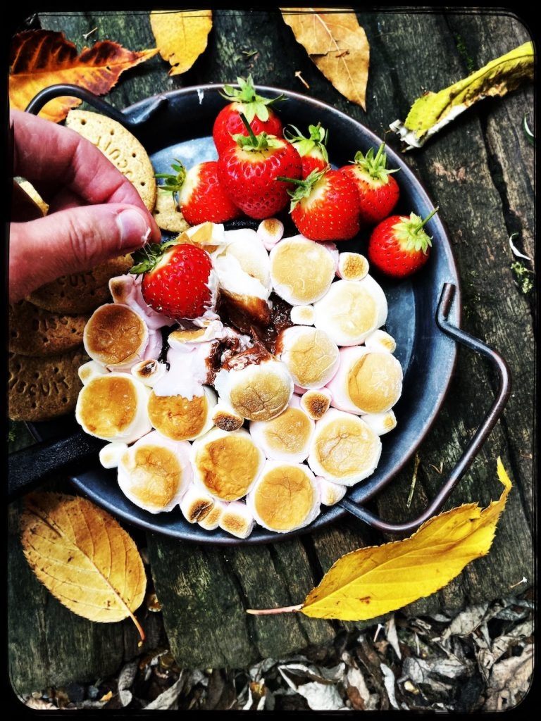 homemade s'mores dip with strawberries and digestive biscuits for dipping in