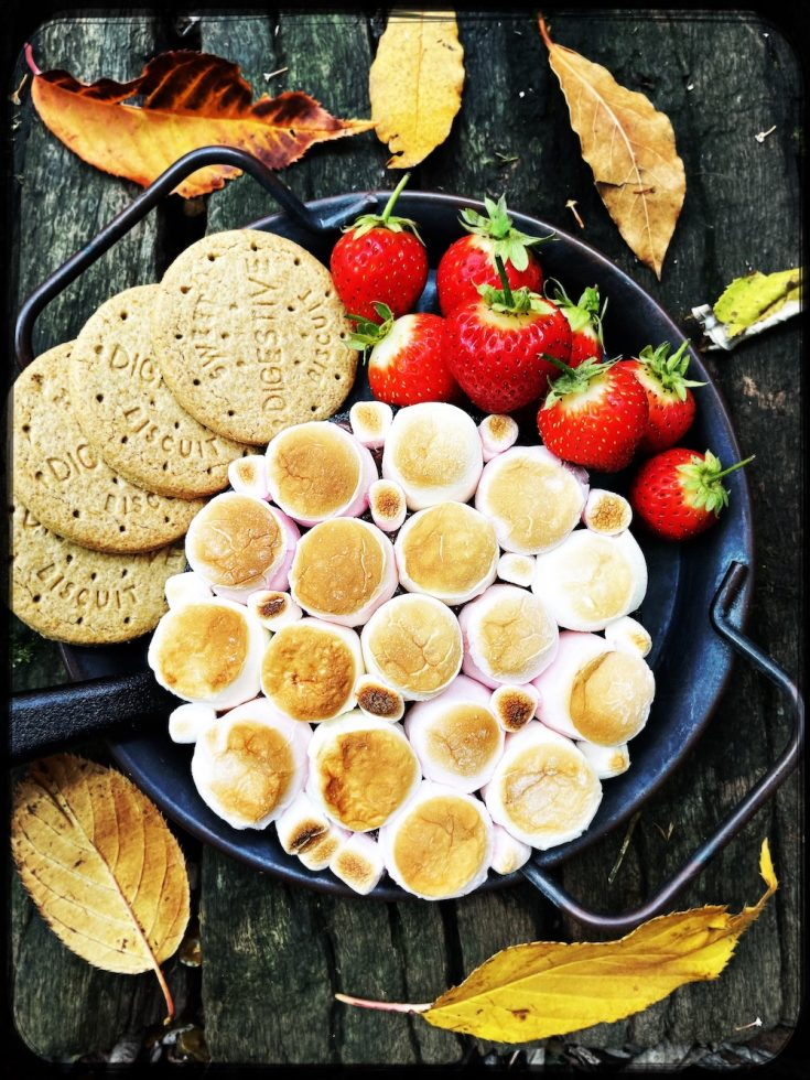 s'mores dip - chocolate dip topped with toasted marshmallows and served with digestive biscuits and strawberries for dipping in
